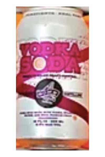 4 Sons Brewing Vodka Soda