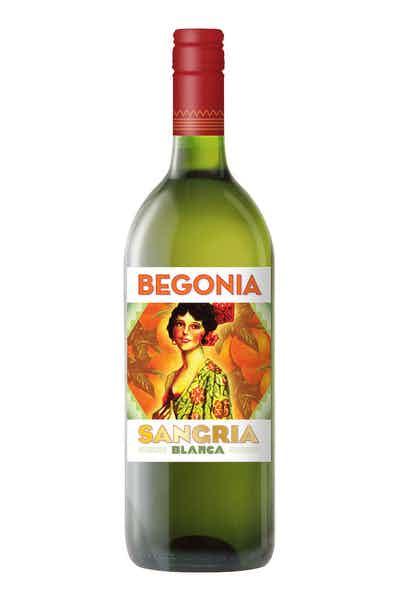 Begonia Sangria Blanca