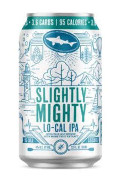 Dogfish Head Slightly Mighty Lo-Cal IPA