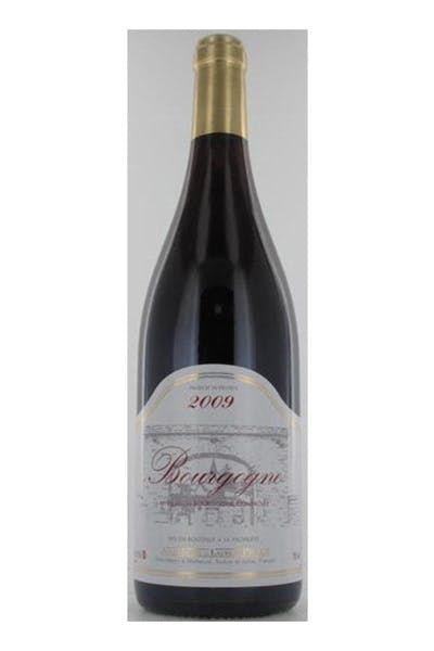Jean-Michel and Laurent Pillot Pinot Noir