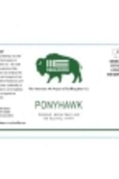 Resilience Ponyhawk